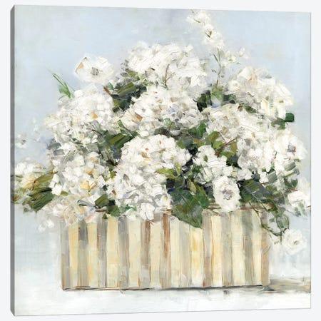Sweet Hydrangeas Canvas Print #SWA116} by Sally Swatland Canvas Artwork
