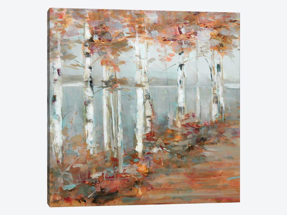 Birch Walk I by Sally Swatland 1-piece Canvas Print
