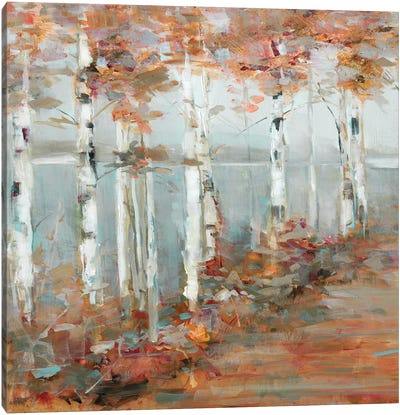 Birch Walk I Canvas Art Print