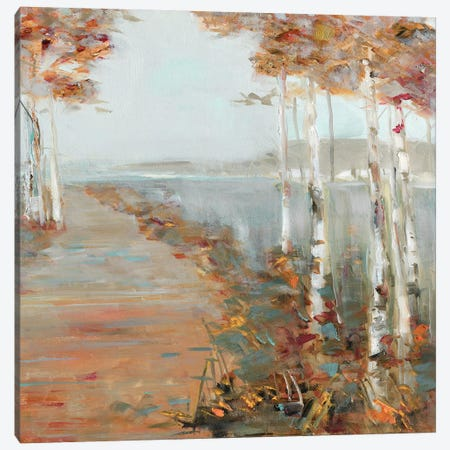 Birch Walk II Canvas Print #SWA130} by Sally Swatland Canvas Print