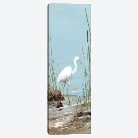 Island Egret I Canvas Print #SWA140} by Sally Swatland Canvas Wall Art
