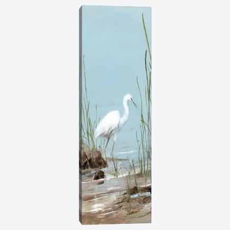 Island Egret I Canvas Print #SWA140} by Sally Swatland Canvas Wall Art