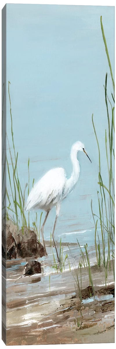 Island Egret I Canvas Art Print