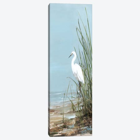 Island Egret II Canvas Print #SWA141} by Sally Swatland Canvas Art