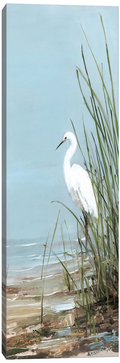 Island Egret II Canvas Art Print