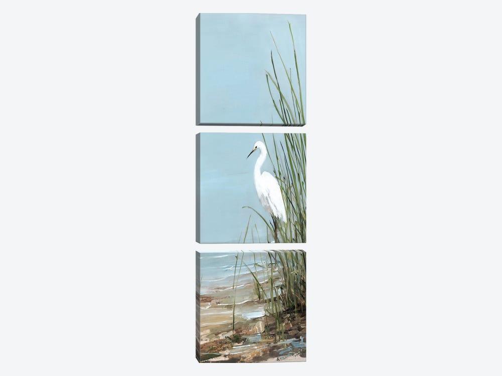 Island Egret II by Sally Swatland 3-piece Art Print
