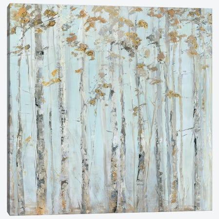 Soft Birch Forest Canvas Print #SWA150} by Sally Swatland Canvas Print