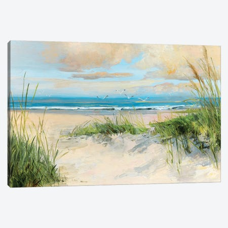 Catching the Wind Canvas Print #SWA160} by Sally Swatland Canvas Artwork