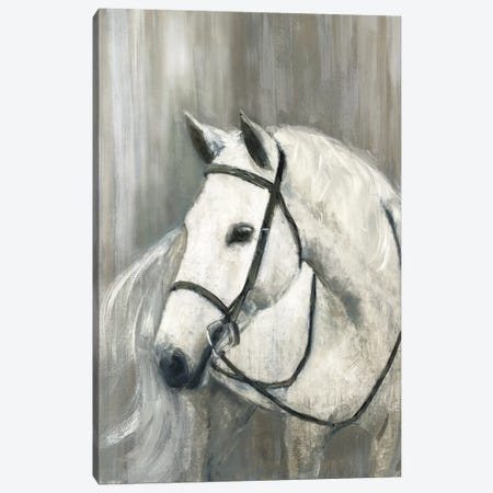 Daydream Believer Canvas Print #SWA161} by Sally Swatland Canvas Artwork