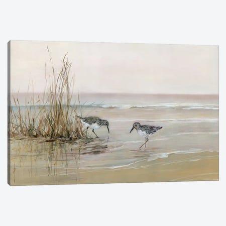 Early Risers I Canvas Print #SWA162} by Sally Swatland Canvas Art