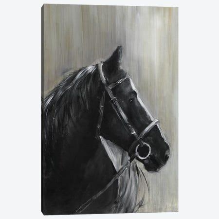 Midnight Thunder Canvas Print #SWA163} by Sally Swatland Canvas Wall Art
