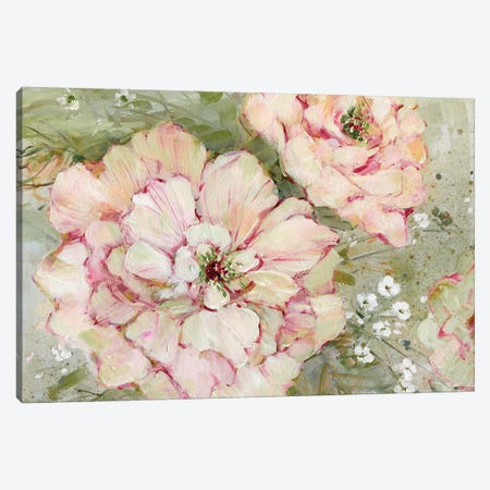 Ambrosia I Canvas Print #SWA16} by Sally Swatland Canvas Wall Art