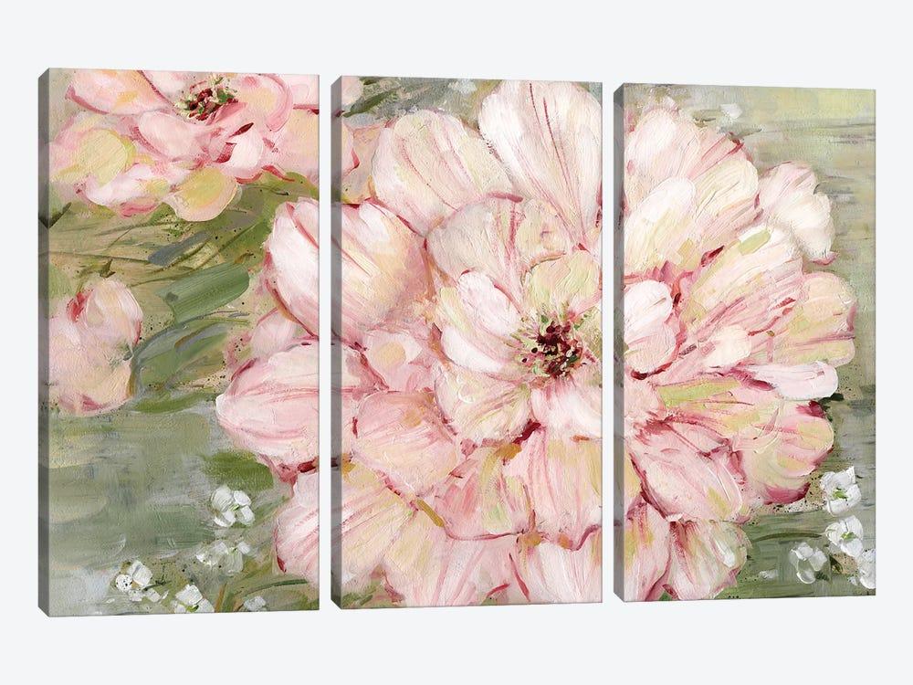 Ambrosia II by Sally Swatland 3-piece Canvas Art Print