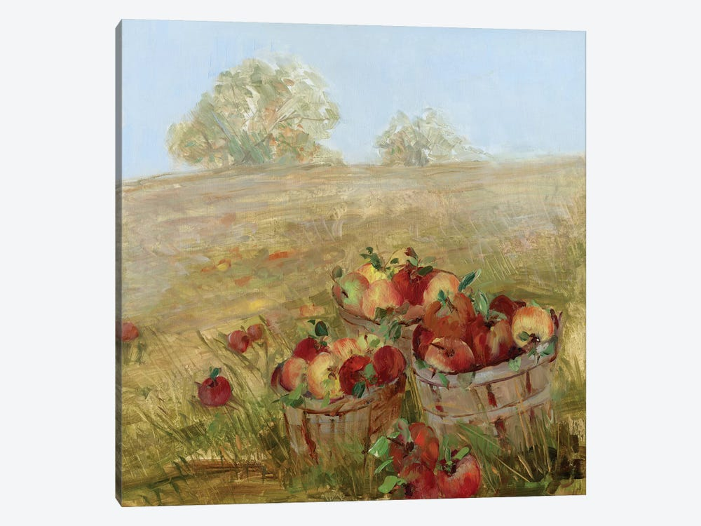 Apple Picking I by Sally Swatland 1-piece Canvas Wall Art