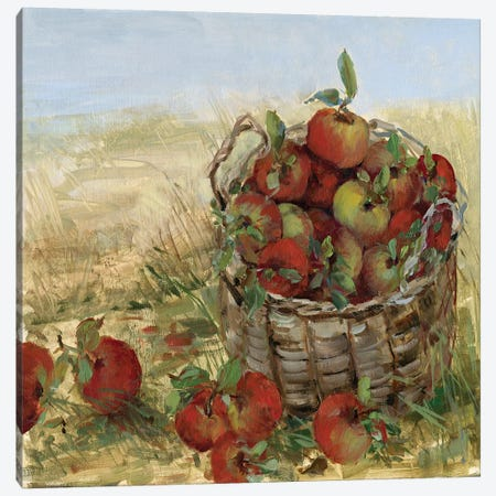 Apple Picking II Canvas Print #SWA19} by Sally Swatland Canvas Art Print