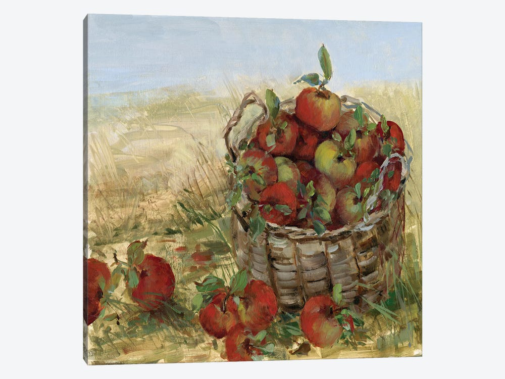 Apple Picking II by Sally Swatland 1-piece Canvas Print