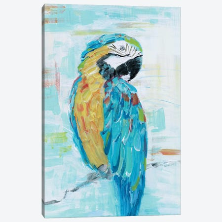 Island Parrot I Canvas Print #SWA202} by Sally Swatland Art Print