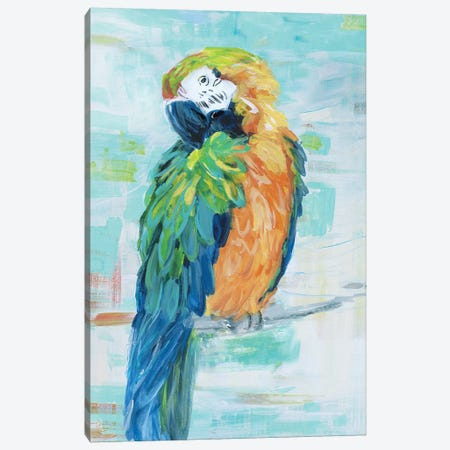 Island Parrot II Canvas Print #SWA203} by Sally Swatland Art Print
