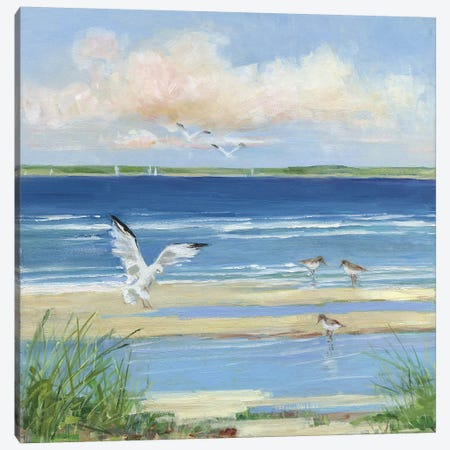 Beach Combing I Canvas Print #SWA204} by Sally Swatland Canvas Wall Art
