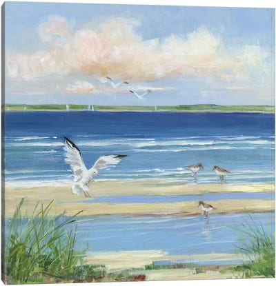 Beach Combing I Canvas Art Print