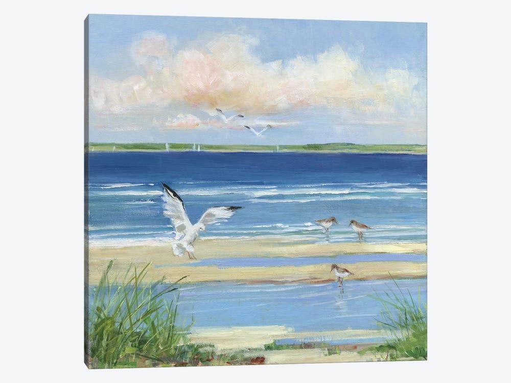 Beach Combing I by Sally Swatland 1-piece Canvas Artwork