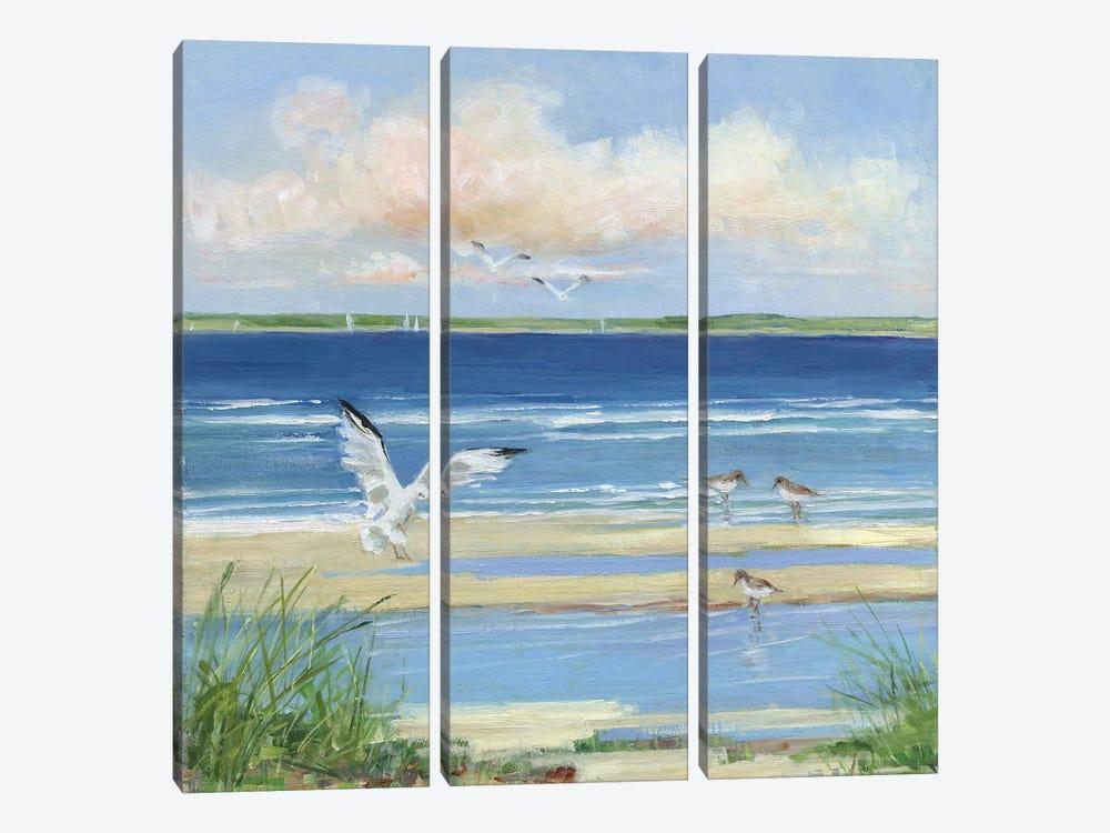 Beach Combing I by Sally Swatland 3-piece Canvas Artwork