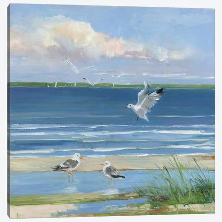 Beach Combing II Canvas Print #SWA205} by Sally Swatland Canvas Wall Art
