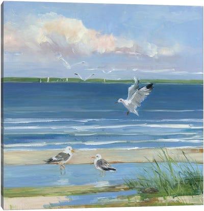 Beach Combing II Canvas Art Print