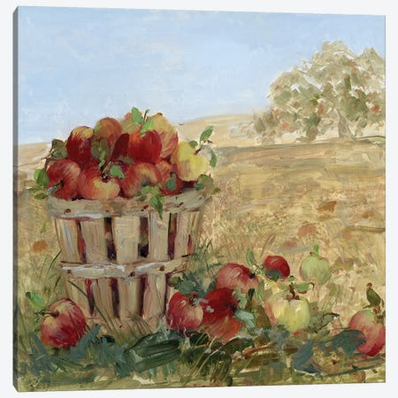 Apple Picking III Canvas Print #SWA20} by Sally Swatland Canvas Art