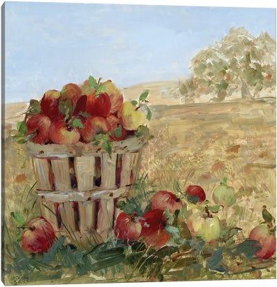 Apple Picking III Canvas Art Print