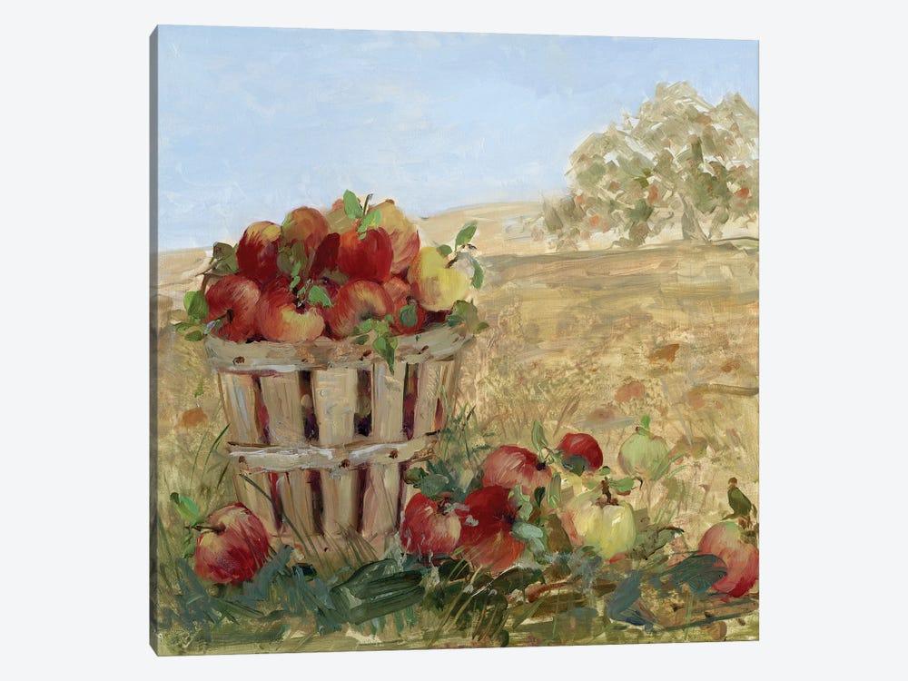 Apple Picking III by Sally Swatland 1-piece Canvas Print