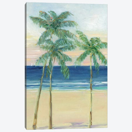 Paradise Palm Canvas Print #SWA222} by Sally Swatland Canvas Print