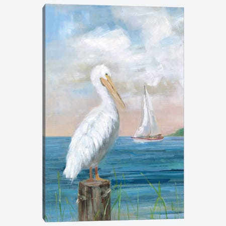 Pelican View I Canvas Print #SWA223} by Sally Swatland Canvas Art Print
