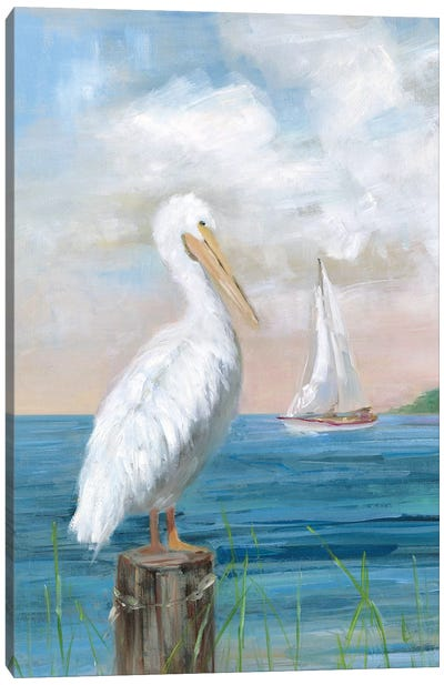 Pelican View I Canvas Art Print