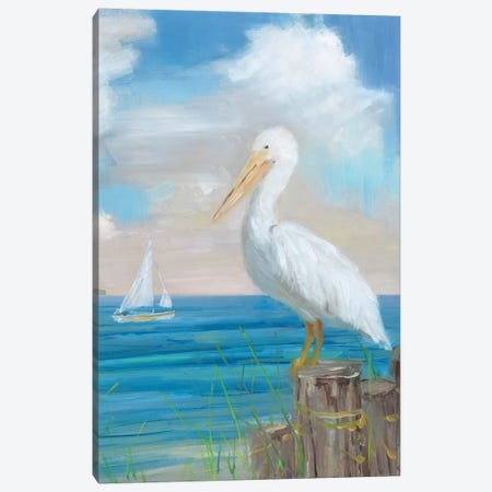 Pelican View II Canvas Print #SWA224} by Sally Swatland Canvas Artwork