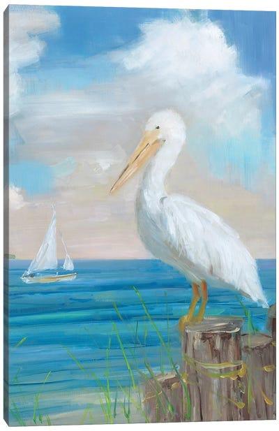 Pelican View II Canvas Art Print