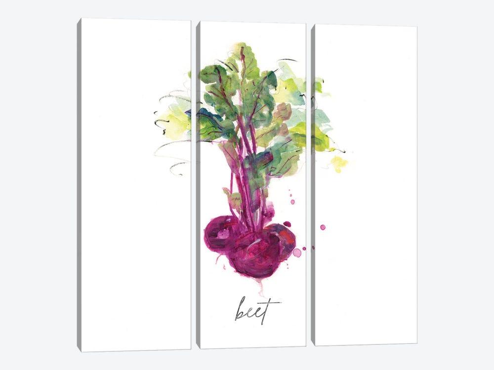 Sketch Kitchen Beet by Sally Swatland 3-piece Canvas Art