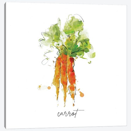 Sketch Kitchen Carrot Canvas Print #SWA229} by Sally Swatland Canvas Print