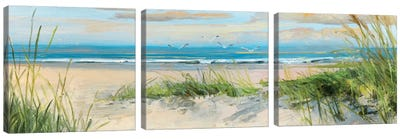 Catching The Wind II Canvas Art Print
