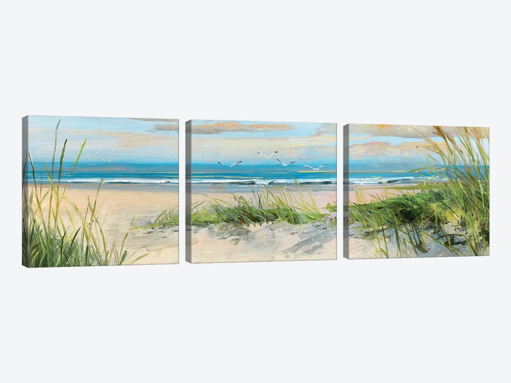 Catching The Wind II by Sally Swatland 3-piece Canvas Art Print