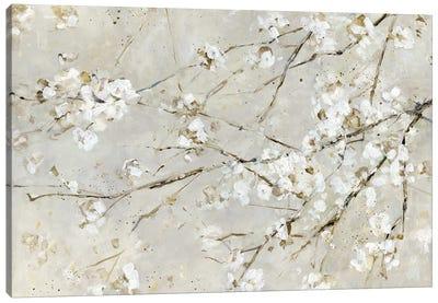 Blossom Confetti Canvas Art Print