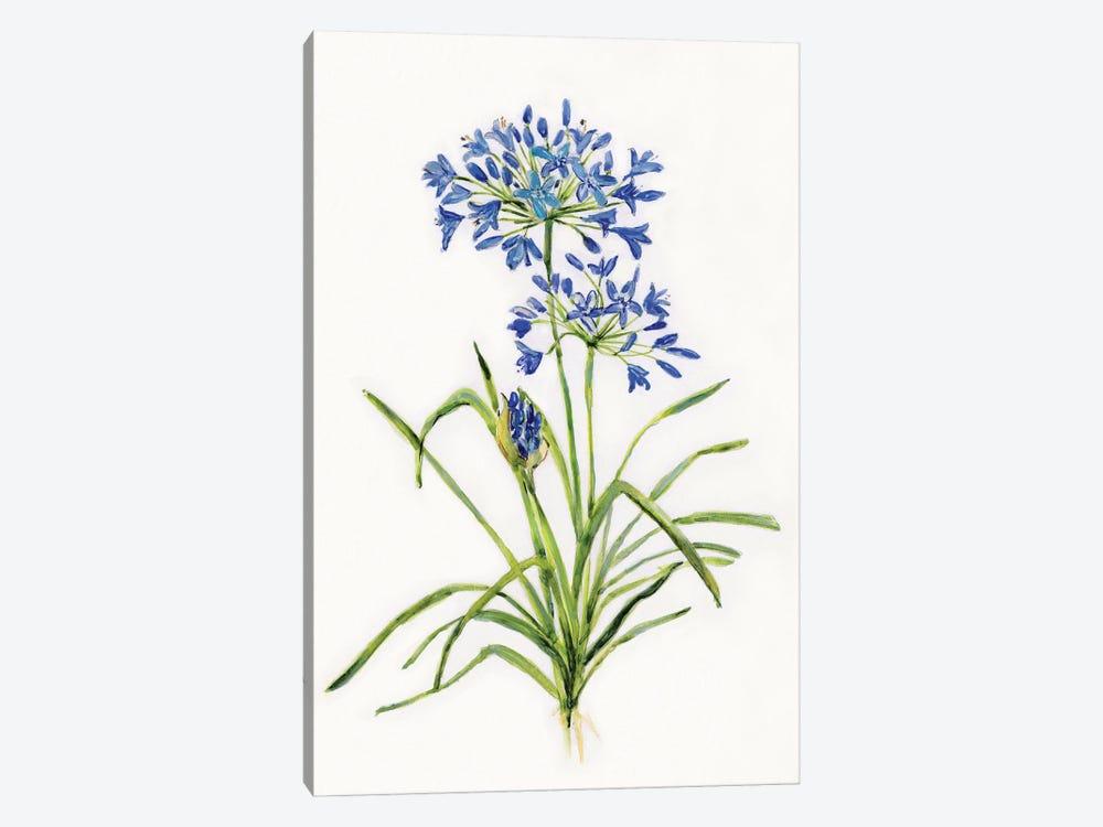 Blue Lively Botanical I by Sally Swatland 1-piece Canvas Art Print