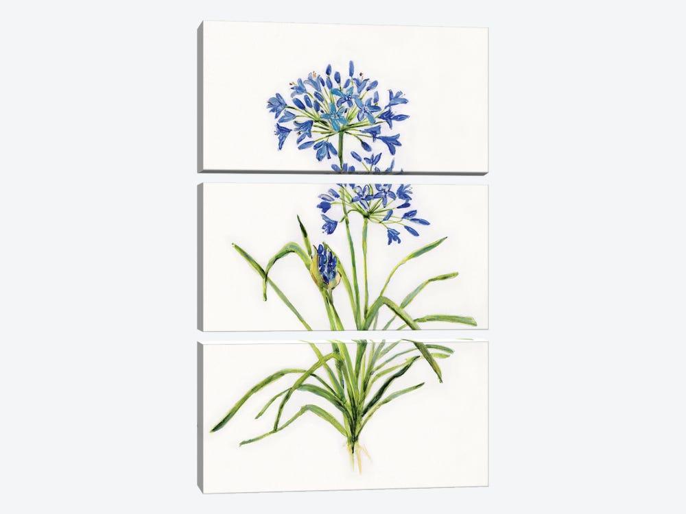 Blue Lively Botanical I by Sally Swatland 3-piece Art Print