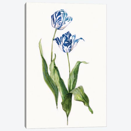 Blue Lively Botanical II Canvas Print #SWA270} by Sally Swatland Canvas Wall Art