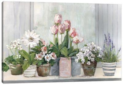 Cottage Grown Canvas Art Print