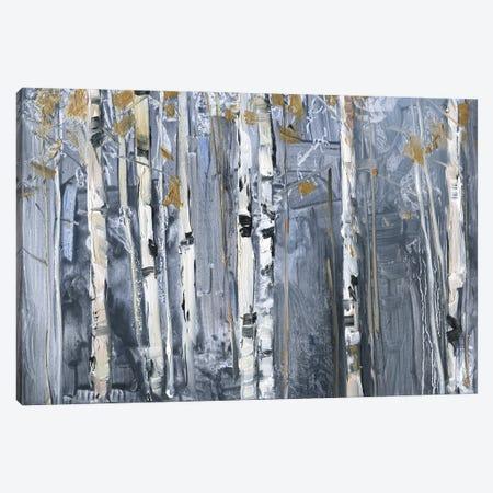 Modern Birch Canvas Print #SWA284} by Sally Swatland Canvas Wall Art