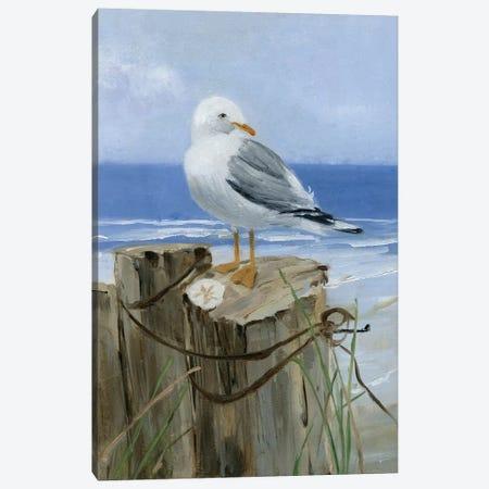 Keeping Watch I Canvas Print #SWA28} by Sally Swatland Canvas Artwork