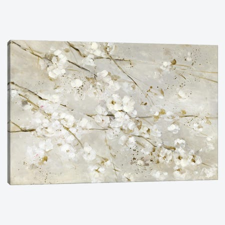 Soft Spring Blossoms Canvas Print #SWA291} by Sally Swatland Canvas Artwork