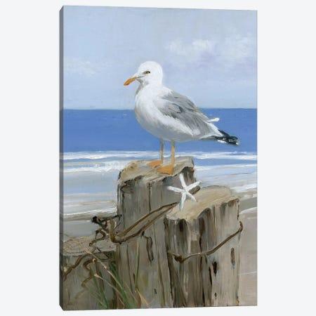 Keeping Watch II Canvas Print #SWA29} by Sally Swatland Canvas Art