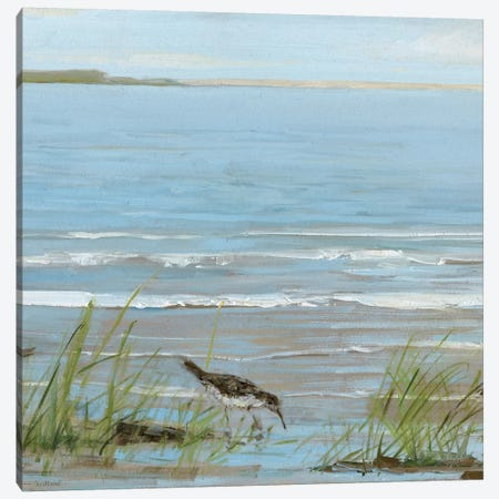 Afternoon On The Shore II Canvas Print #SWA2} by Sally Swatland Canvas Wall Art
